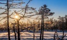 12 idejas, kur aj±s brЫvdien±s doties baudЫt ziemas priekus