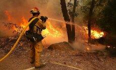 Pie nacionālā parka Kalifornijā plosās liels mežu ugunsgrēks