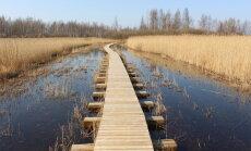Applūdušas palienes un putnu tornis: pavasarīga pastaiga Daugavgrīvā
