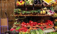Zemnieki: dārzeņu raža būs laba, bet kavēsies teju par mēnesi