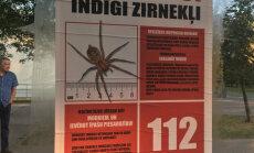 Rīgā izvietoti viltus brīdinājumi par indīgiem zirnekļiem
