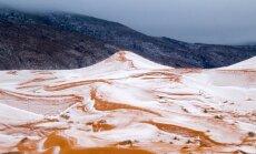 Редкое явление: В Сахаре выпал снег (ФОТО)