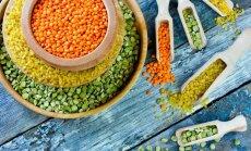 Азбука кухни. Красная, желтая, зеленая... что такое чечевица и с чем ее едят?