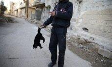 Foto: Sīrijas armija uzbrukumā atkal izmantojot indīgu gāzi