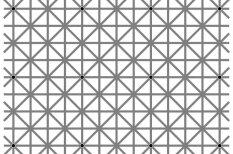 Люди впадают в истерику, пытаясь увидеть на картинке сразу все 12 черных точек. А ты?