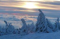 Deviņi skaisti dabasskati ar problemātisko Eiropas ziemu