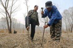 Būtu tikai vēlēšanās: aklais un bezrocis iestāda 10 000 koku
