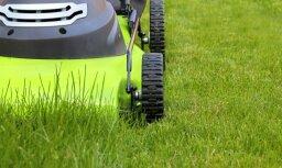 ЗАБАВНОЕ ВИДЕО: Зачем он это делает? Мужчина косит траву, спрятанную под сугробами