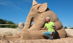 ФОТО: Названы победители фестиваля песчаных скульптур в Елгаве
