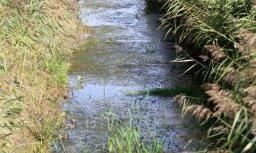В Риге в канаве найдено тело утонувшего человека