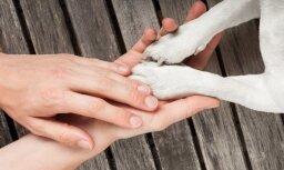 В социальном доме до смерти избили 2-месячного щенка