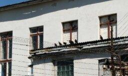 Страны Балтии — лидеры ЕС по числу заключенных
