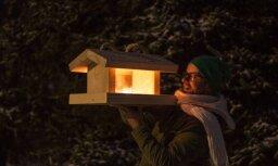 Noklausies! Lauris Valters ierakstījis Ziemassvētku noskaņu kompozīciju 'Zīlīte'