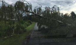 Video: Spēcīgā vēja radītie postījumi Daugavpils pusē