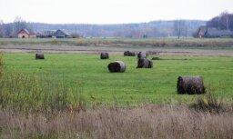 Lauksaimniecības zemes iegādei noteiktā līmenī jāzina latviešu valoda, lemj Saeima