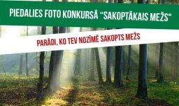 Foto konkurss 'Sakoptākais mežs': sūti foto, ko tev nozīmē sakopts mežs, un laimē atpūtu koku galotnēs