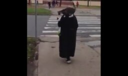 Video: Tantiņa iet par Rīgu ar kaķi uz pleca
