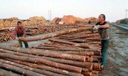 Meža nozares eksports palielinājies par 1,4%; imports – 7,2%