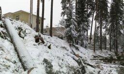 Strīds par meža izciršanu Sunīšos: ministrija saskata pārkāpumus