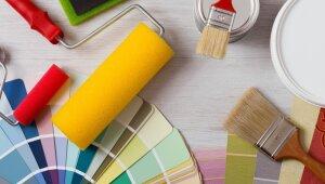 Īstās krāsas meklējumos: kā izvēlēties pareizo bundžiņu