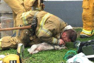 Varonīgs glābējs ASV atdzīvina ugunsgrēkā paģībušu sunīti