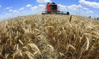 EK pieprasa Latvijai grozīt tiesību aktus par lauksaimniecības zemes iegādi