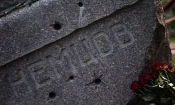 Первым лауреатом премии Бориса Немцова стал Лев Шлосберг