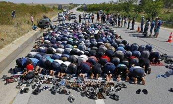 СМИ: в Дании беженцы массово переходят в христианство