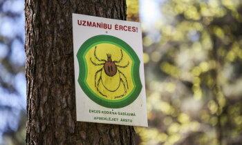 Парк как зона риска? Готова ли Латвия к борьбе с клещами, осваивающими новые территории