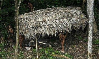 Brazīlijā nežēlīgi noslaktēti nošķirti dzīvojošas cilts pārstāvji