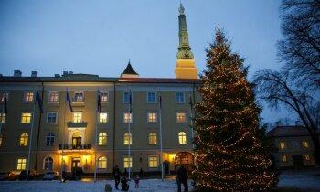 Rīgas Ziemassvētku eglītes maksās 18 tūkstošus eiro