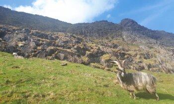 Pārbaudīts maršruts, kā uzkāpt Velsas augstākajā virsotnē – Snoudonā