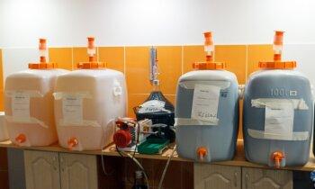 Vīna darināšana nav pankūku cepšana. Ciemos pie Kugrēnu ģimenes Bauskā