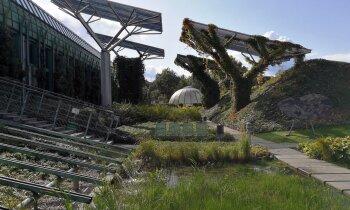 Dzīvais jumts: milzīgs zaļš dārzs virs bibliotēkas Varšavā