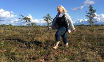 Женщины на болоте. Толкузе: зеленый цвет — прохода нет, а красный — не опасный