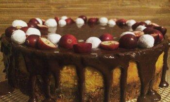 Sulīgā ķirbju siera kūka ar šokolādes glazūru
