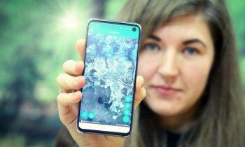 Meža nozare bez IT nav iedomājama. Latvijas 'Nokia' – LVM GEO platforma