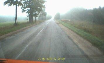 ВИДЕО: Грузовик обгоняет школьный автобус в густом тумане