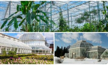 Tropu oāzes ziemas salā: 8 brīnišķīgas Eiropas oranžērijas un siltumnīcas