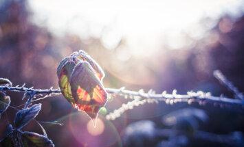 Морозное Пасхальное утро: столбик термометра опустился до -6 градусов