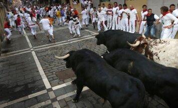 Dainis Cipulis: Spānijas brīnums