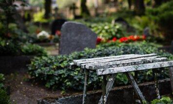 Tautas ieteikumi: Krāšņākie daudzgadīgie augi un krūmi stādīšanai kapos
