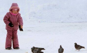 В субботу снегопад в Латвии продолжится, но потеплеет