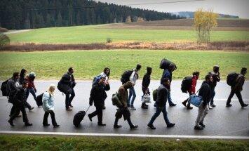 Население Германии увеличилось на полмиллиона за счет беженцев