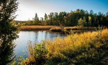 Pārgājieni, velobraucieni un pat restorāni mežā: aicina uz ceļotāju dienu Ķemeros