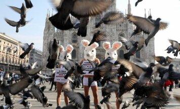 Господа — не звери: мода объявляет меху бойкот
