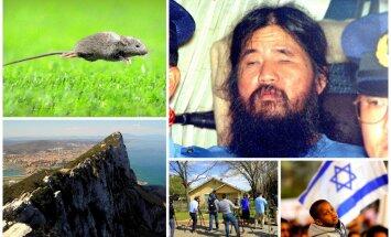 Nedēļa pasaulē: Gals Japānas indētājiem, Teksasas spridzinātājam un Jaunzēlandes pelēm