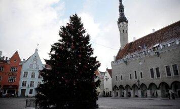 ФОТО: В Таллине на Ратушной площади все еще красуется новогодняя елка