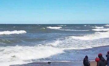 Video: Ronēns pēc sauļošanās Liepājas pludmalē iemūk jūrā