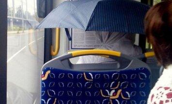 ЗАБАВНОЕ ФОТО: Кажется, дождик собирается...